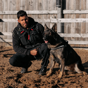 Protection Dogs Trainers